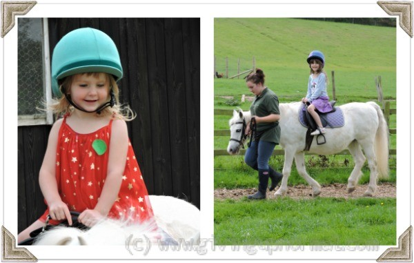 Stonehurst Family Farm Pony Rides